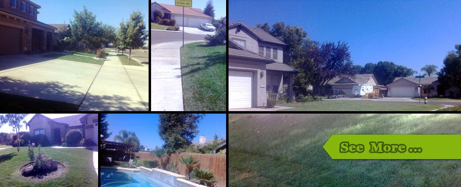Lawn service visalia ca ricardo 39 s evergreen lawn service for Landscaping rocks visalia ca